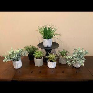 Faux Floral Succulents & Plants 🌱